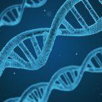 起立性調節障害は遺伝するのか?親兄弟との影響について